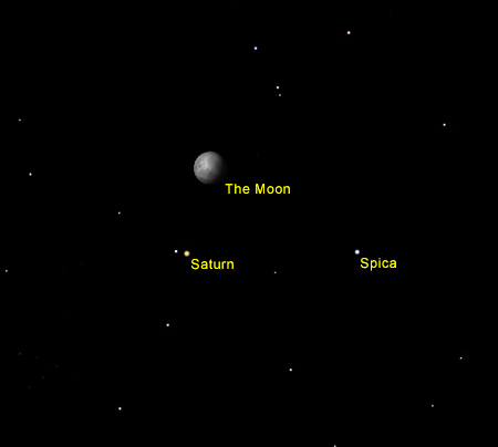 See the Moons of Saturn | Name A Star Live